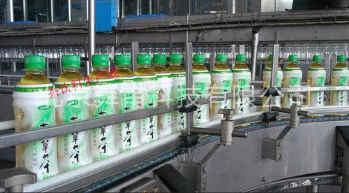 凉茶生产线